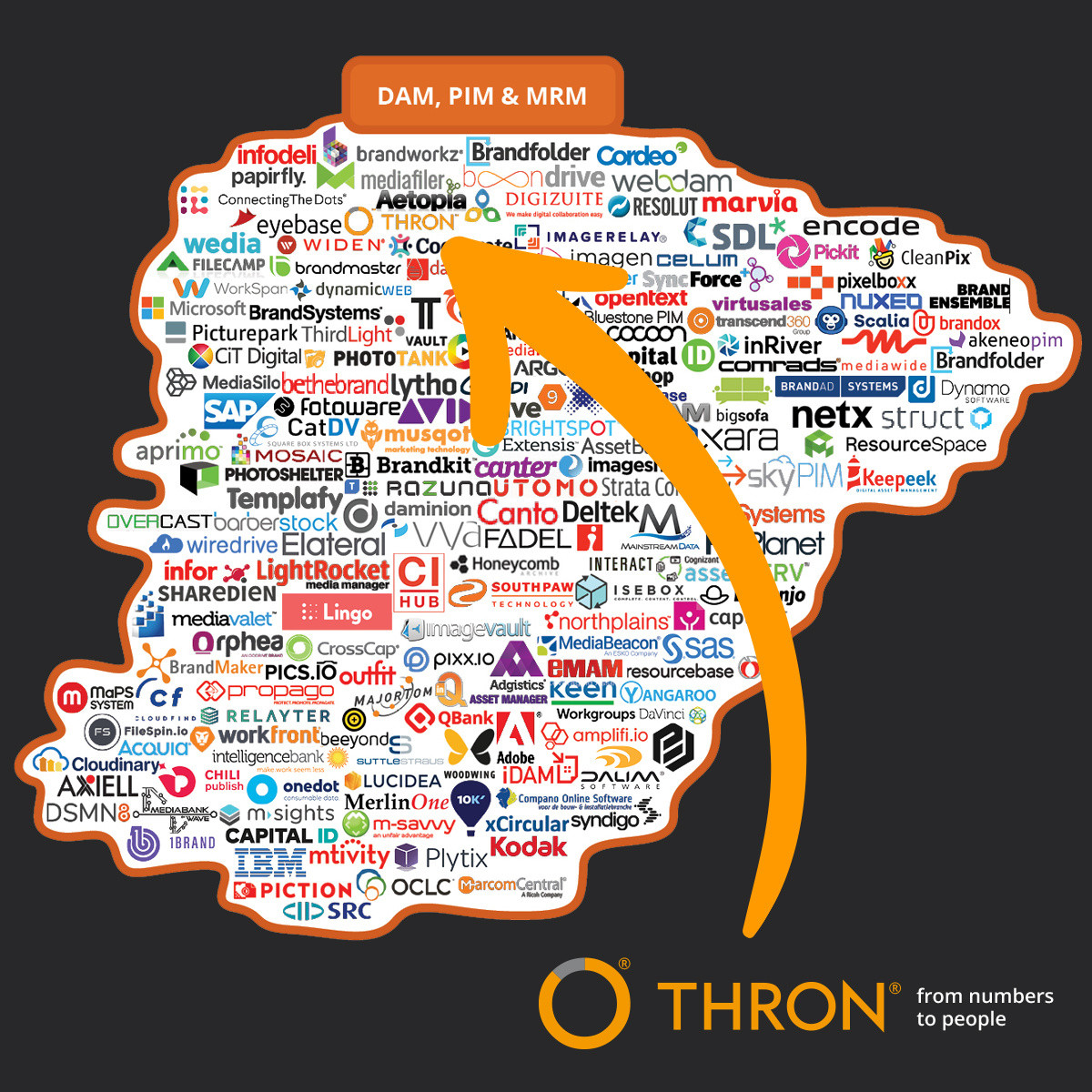 martech-brinker-thron