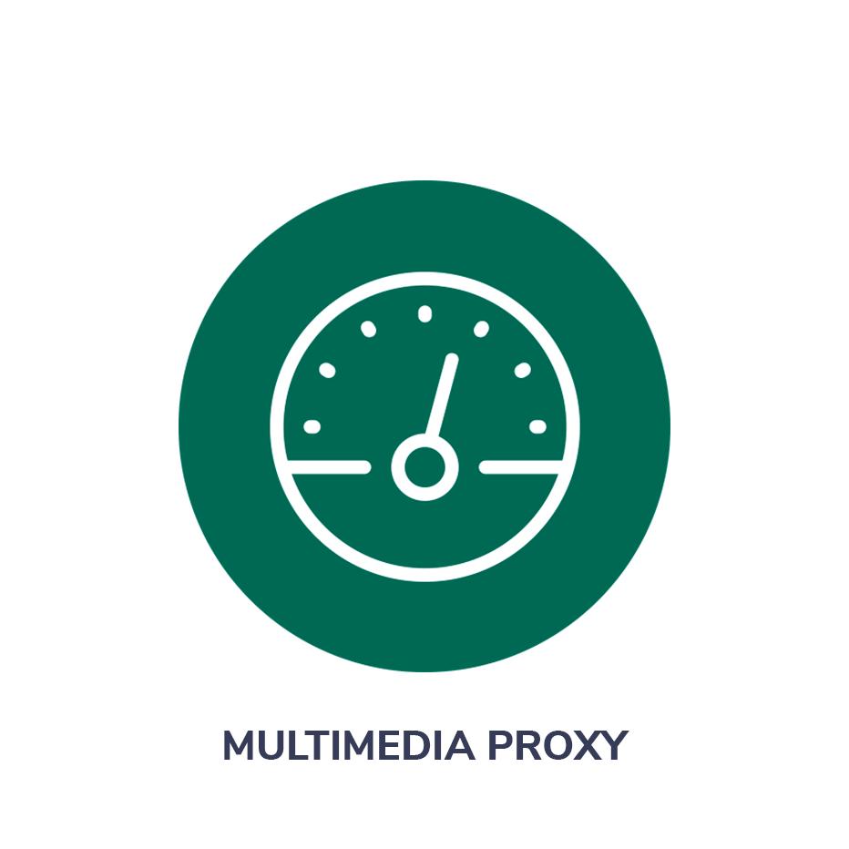 Multimedia Proxy
